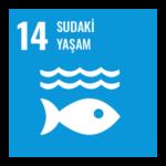 sudaki-yasam-14